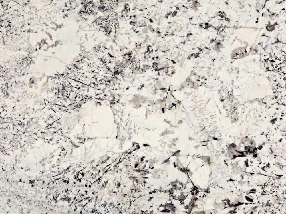 Delcatus White